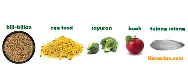 Nutrisi seimbang kenari