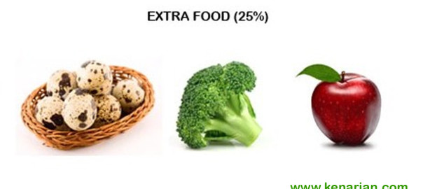 Extra food kenari 3